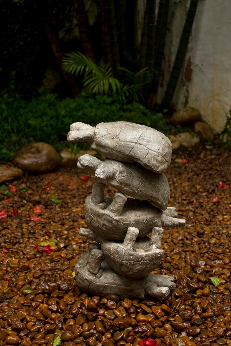 tartarugas1-small